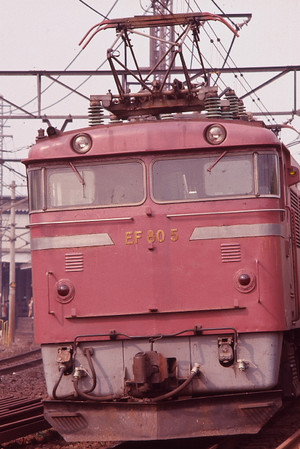 1977103005