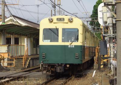 P6011499_1