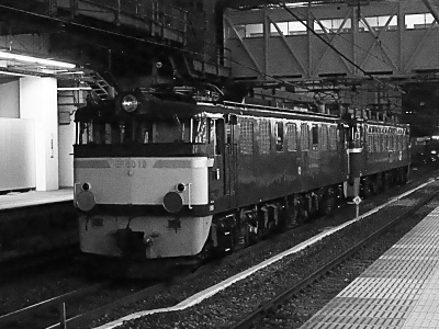M1031197_1