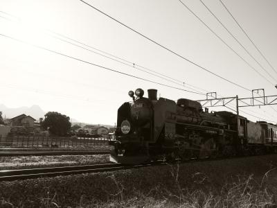 P5250202_1