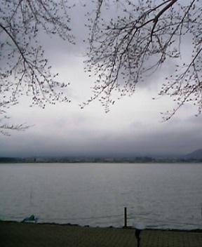 河口湖にて